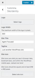 site identity and logo in WordPress customizer