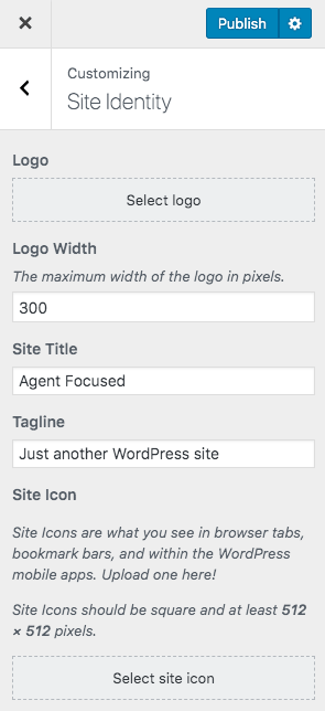 site identity and logo in WordPress customizer