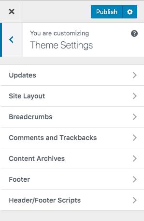 genesis theme settings in WordPress customizer