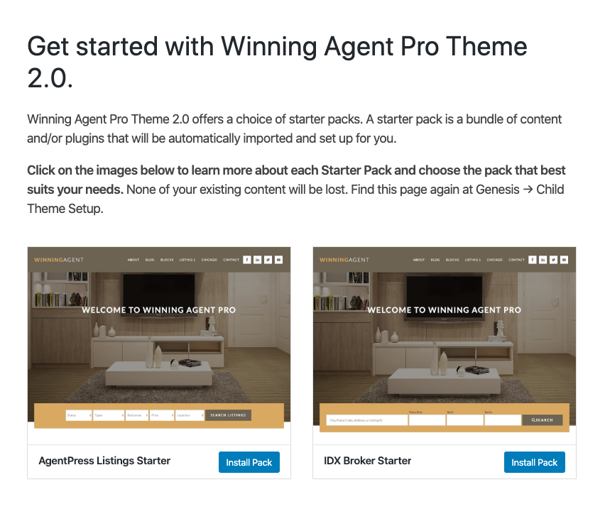winning agent theme one-click theme install